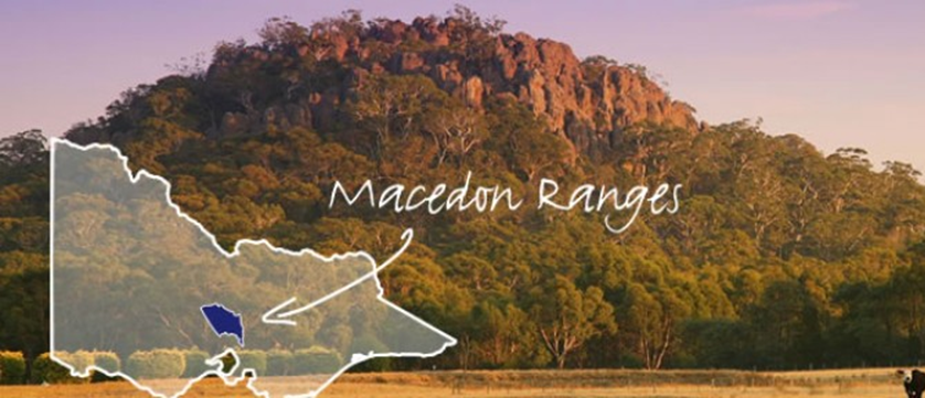 Mid Size Car Rental >> Cheap Car Hire & Car Rental in Melbourne City & Airport - Macedon Ranges Car Rental